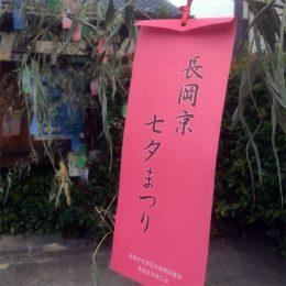 長岡京市の理容店 ヘアーサロンデュオ 7月
