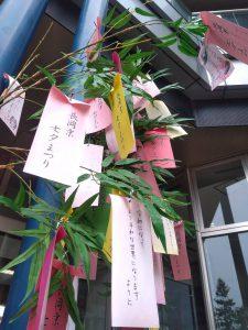 長岡京市の理容店 ヘアーサロンデュオ 7月 バンビオの七夕飾り