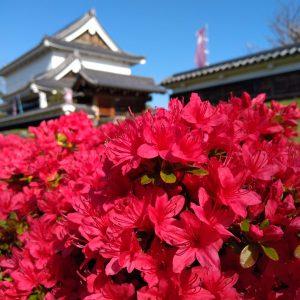 長岡京市の理容店 ヘアーサロンデュオ 5月